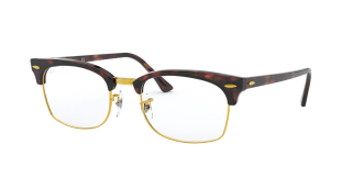 Ray-Ban RB3916V Clubmaster Square