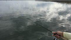 Blue Light Filter Lenses: An Essential for Fishing Sunglasses