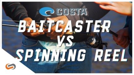 Baitcaster vs Spinning Reel