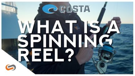 What is a Spinning Reel?