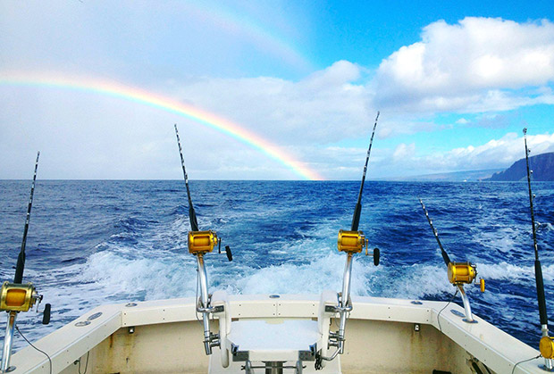 Maui Jim Fishing Sunglasses Buyer's Guide