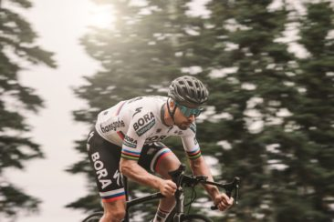 100% - Peter Sagan Limited Edition Collection
